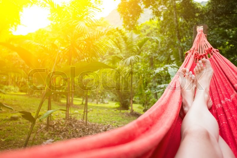 Girl lying in a hammock in the tropical jungles of Brazil. Brasil , stock photo