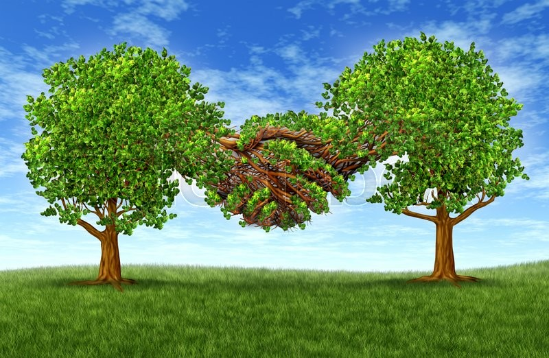 Business Partnership Growth Success With Two Growing Gree Trees In The  Shape Of Two Hands Hand Shaking Together As A Financial Symbol Of Agreement  And ...  Partnership Agreement Between Two Companies