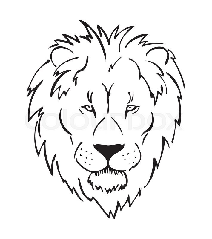 Line Drawing Lion Head : Full face lion head african sketch black and white