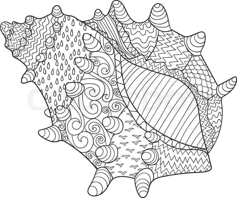 Zendoodle Coloring Pages Gorgeous Seashell With High Detailsadult Antistress Coloring Pageblack Inspiration Design