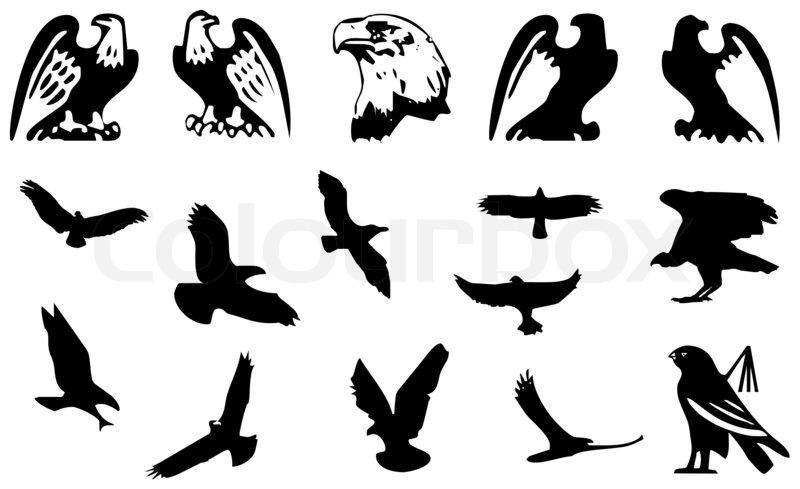 Eagle Symbol Isolated On White Stock Photo Colourbox