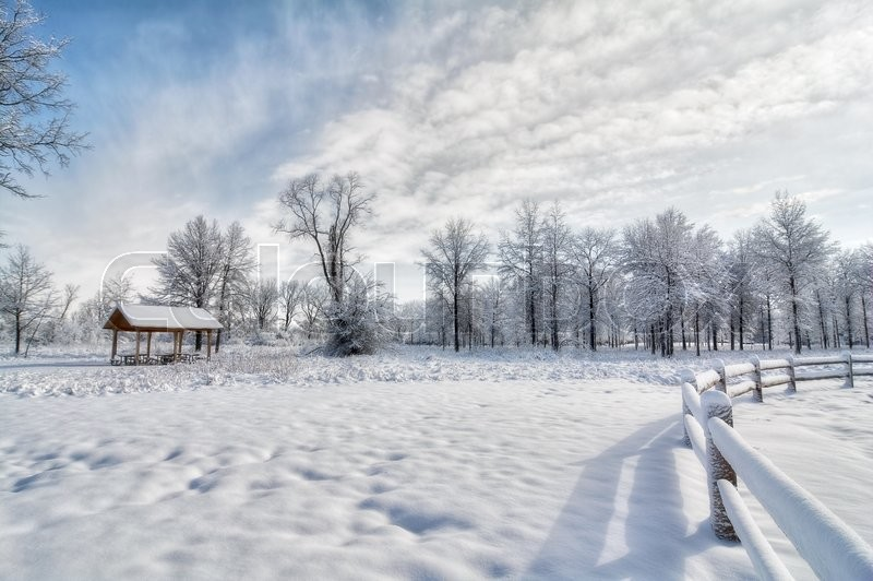 A Snowy Winter Scene In A Park With A Stock Photo