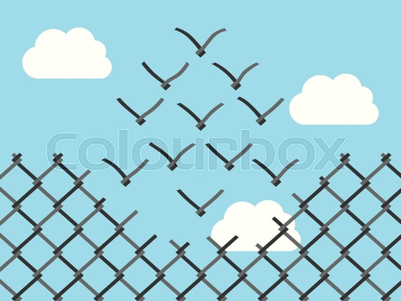 Chain link fence transforming into wire mesh birds flying away ...