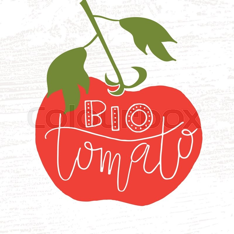 hand sketched bio tomato lettering typography concept for farmers rh colourbox com