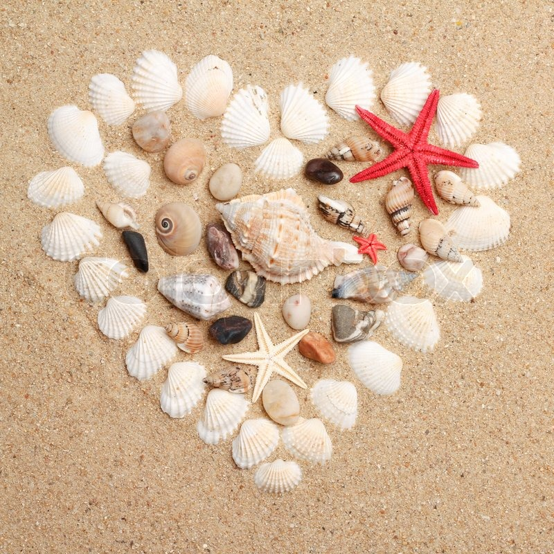 Heart made with shells stock photo colourbox for What are shells made of