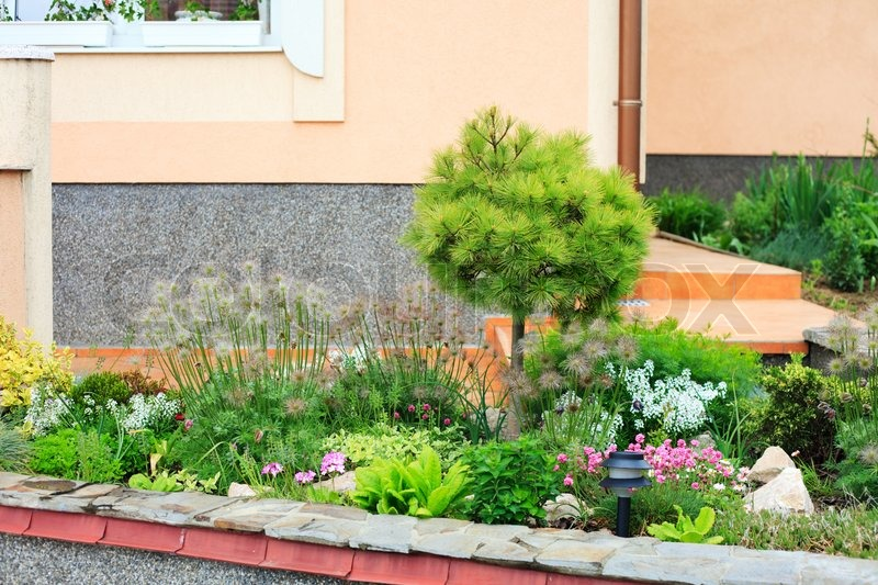 Beautiful house yard with different plants stock photo colourbox - Beautiful house plants ...