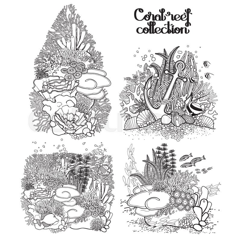 Coral reef collection in line art style Sea and ocean plants and