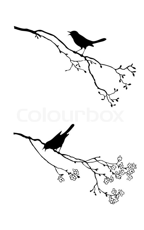 Vector Silhouette Of The Bird On Branch Tree Stock