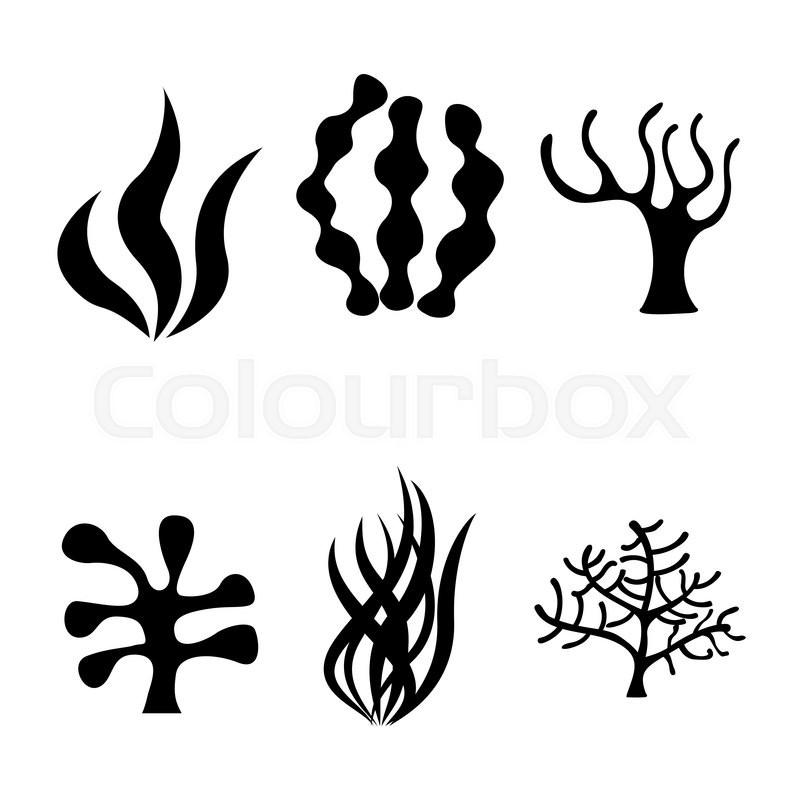 Vector Black Seaweed Icons Set On ...
