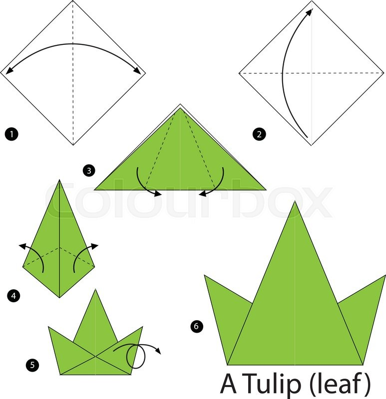 Step By Instructions How To Make Origami A Tulipleaf Vector
