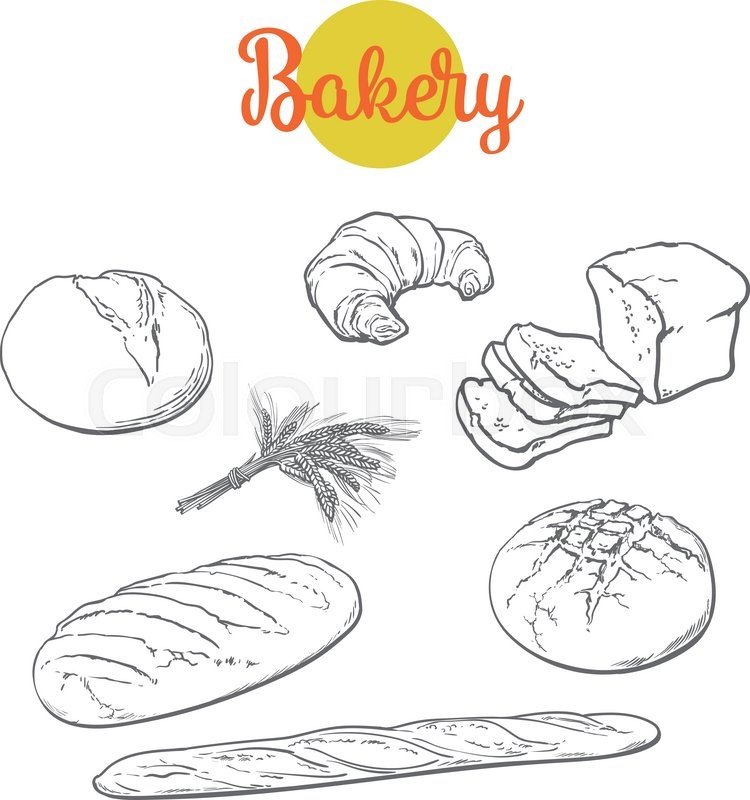 Set Bread Products Pastries Vector On A White Background Sliced Loaf French Baguette Rye Wheat Branch Cutting Cakes Croissants Colored Sketch