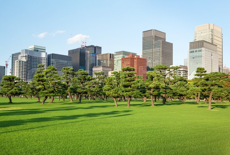 Stock image of 'Pine trees park in front of skyscrapers of Tokio, Japan'
