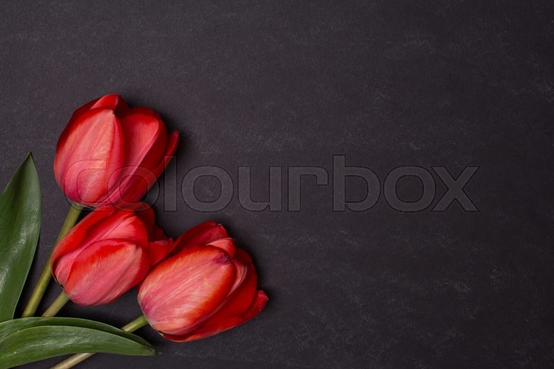 Stock image of 'Empty clean black chalkboard with red tulips. Top view with copy space. Valentines day card or template for your design.'
