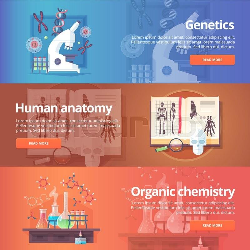 Genetics Human Genome Human Anatomy Anatomical Atlas Organic