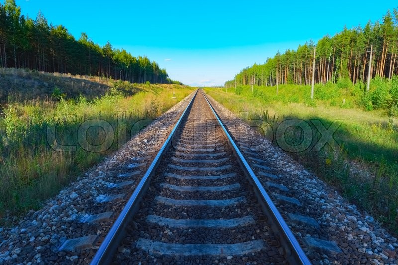 Stock image of 'View of railroad track with green forest on both sides'