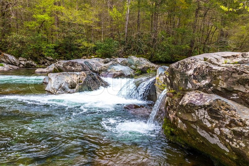 Stock image of 'Forest creek. Water cascades over rocks in Great Smoky Mountains National Park.'