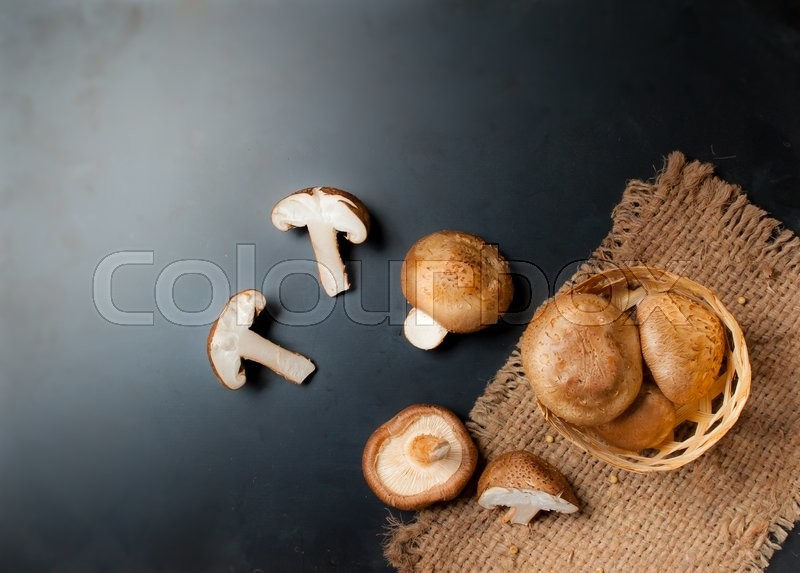 Stock image of 'Shiitake mushroom on dark background,Text Space'