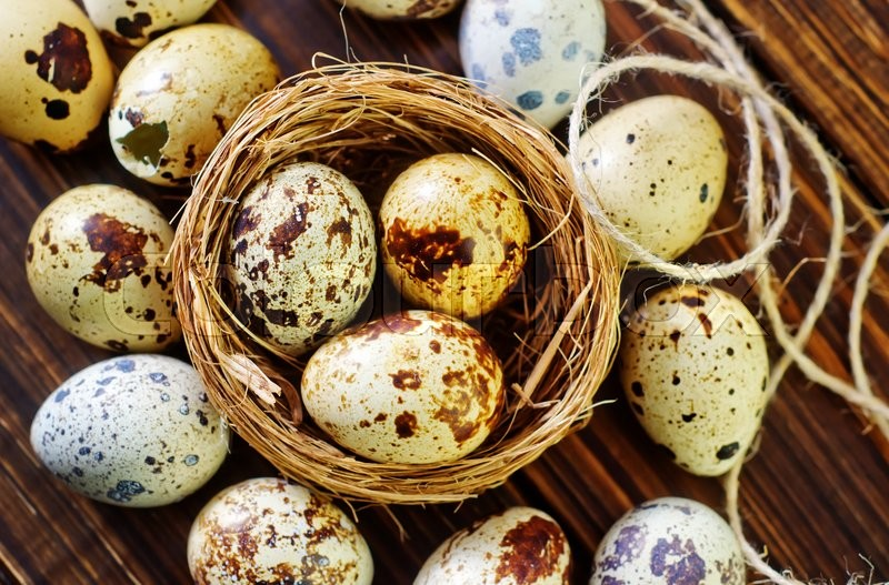 Stock image of 'Quail eggs'