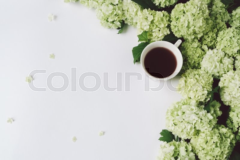 Stock image of 'Green flowers and yellow cup with tea on a white background, top view, space for text'
