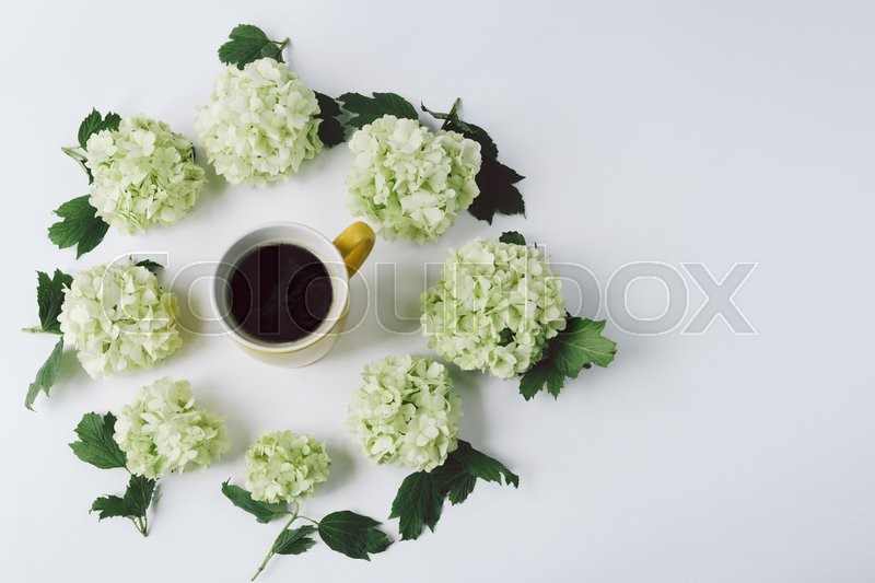 Stock image of 'Green flowers with leaves in the form of a circle lying around the yellow Cup with coffee on white background, top view'