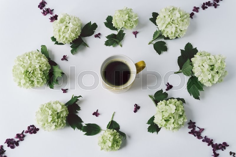 Stock image of 'Green flowers and petals of lilac in the form of a circle lying around the yellow Cup with coffee on white background, top view'