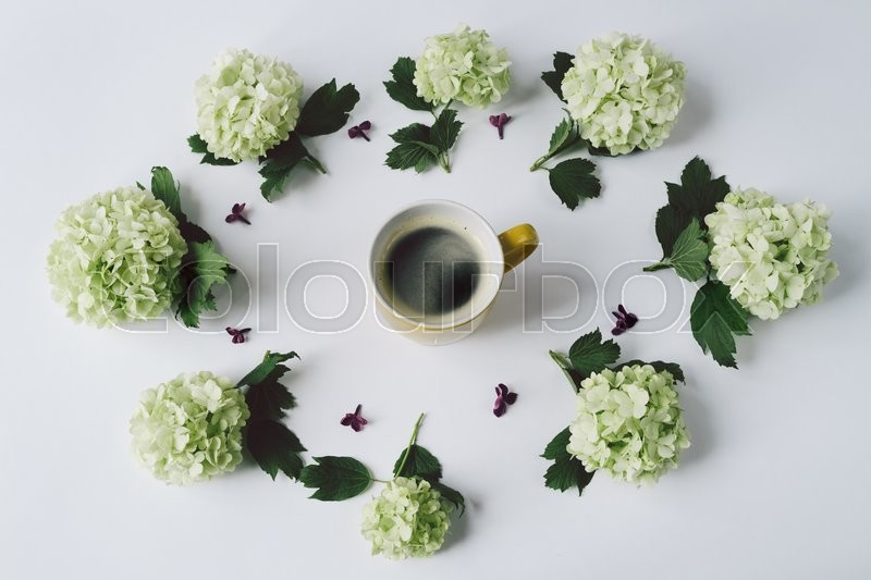 Stock image of 'Green flowers in the form of a circle lying around the yellow Cup with coffee on white background, top view'