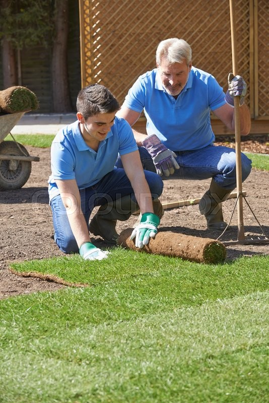 Stock image of 'Landscape Gardeners Laying Turf For New Lawn'