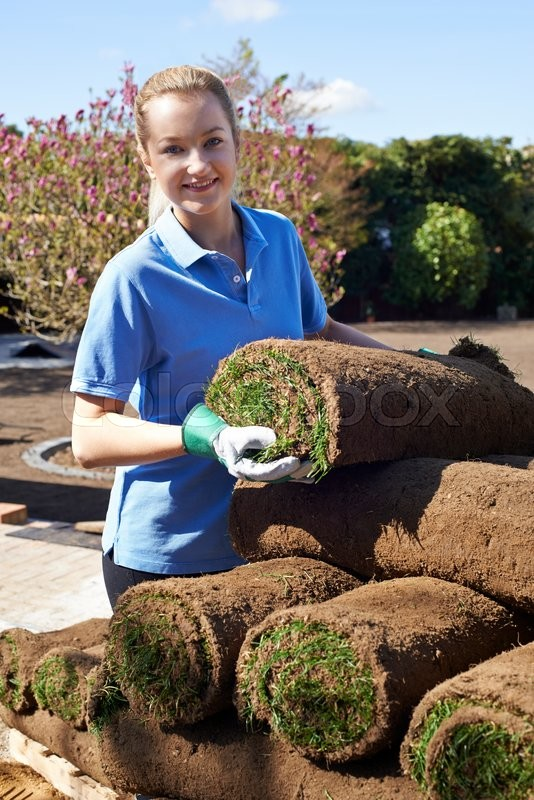 Stock image of 'Female Landscape Gardener Laying Turf For New Lawn'