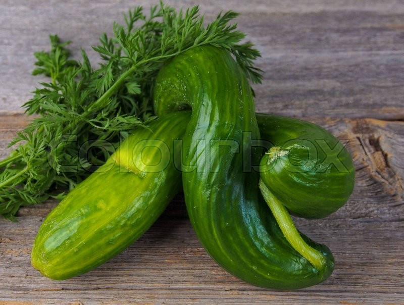 Stock image of 'Cucumbers on a table'