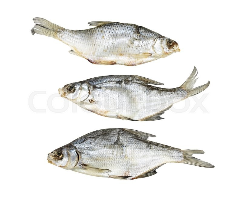 Stock image of 'Dried fish on a white background'