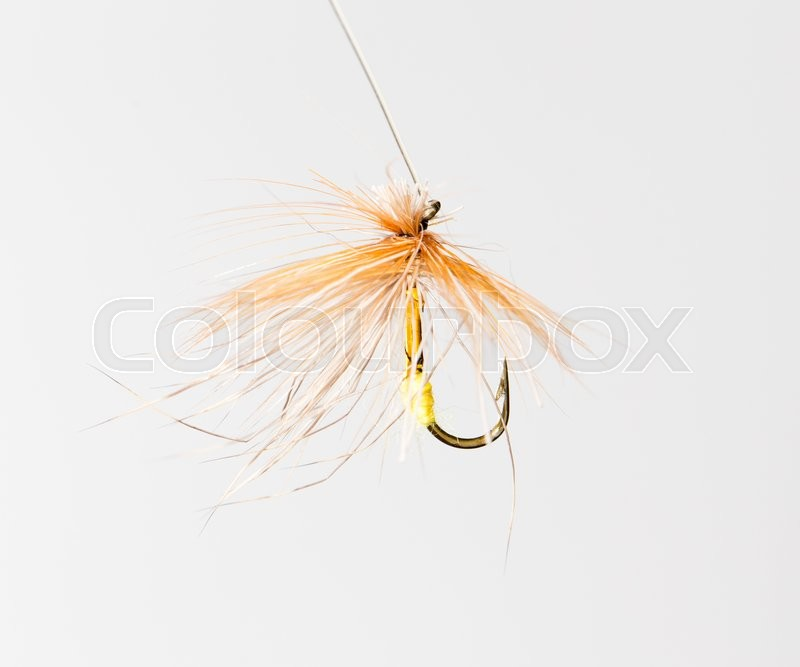 Stock image of 'Fly for fishing on a white background'