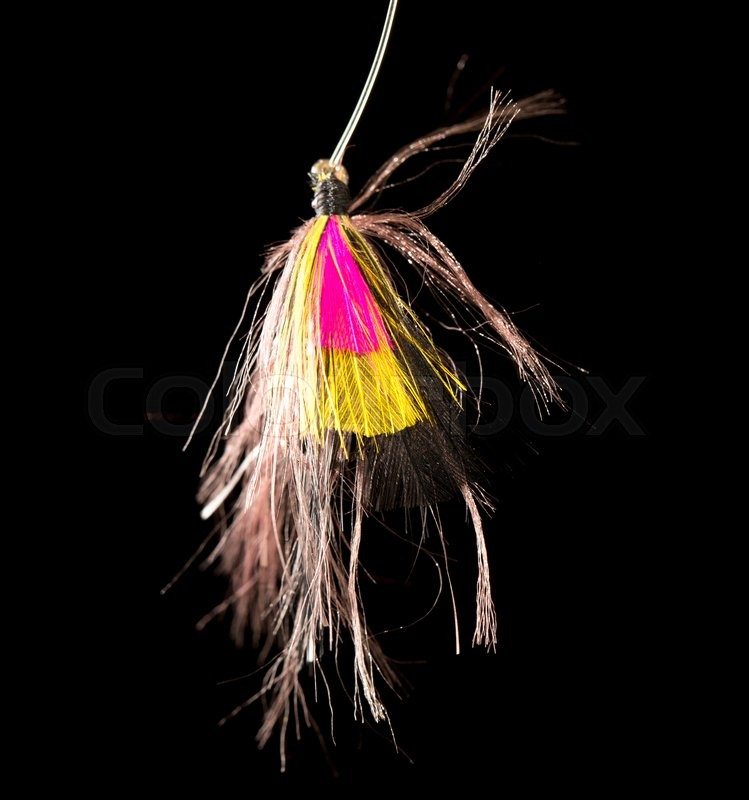 Stock image of 'Fly to catch fish on a black background'