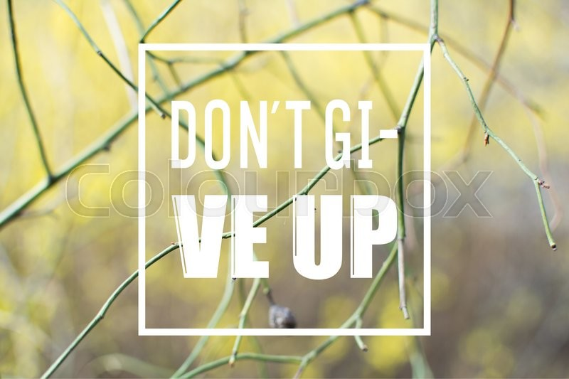 Stock image of 'the phrase dont give up written over sad spring or autumn background with branches and defocused bushes.'