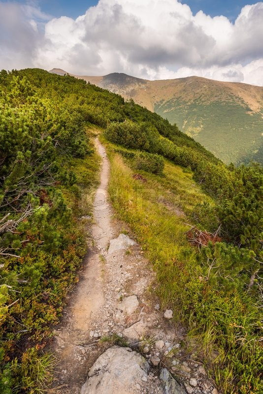Stock image of 'Hiking Trail on the Hill in the Mountains'