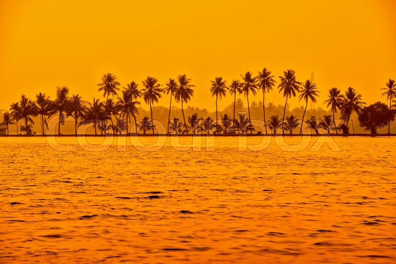 Stock image of 'Beautiful sunset scene of backwaters Kerala with silhouette of palm trees, travel background, India'