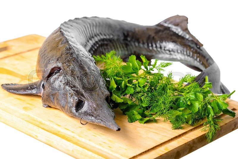 Stock image of 'Fresh raw sturgeon fish with greens on wooden plank is isolated on white  background, closeup'
