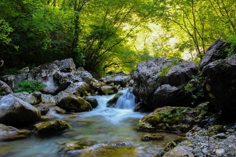 Stock image of 'stream of pure water flowing between rocks and trees'