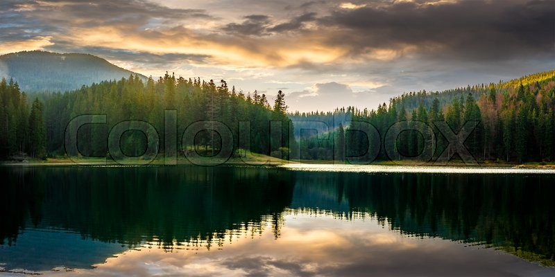 Stock image of 'Pine forest and lake near the mountain early in the morning'