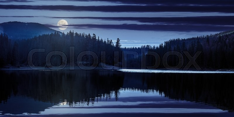 Stock image of 'lake near the pine forest in mountains at night in full moon light'