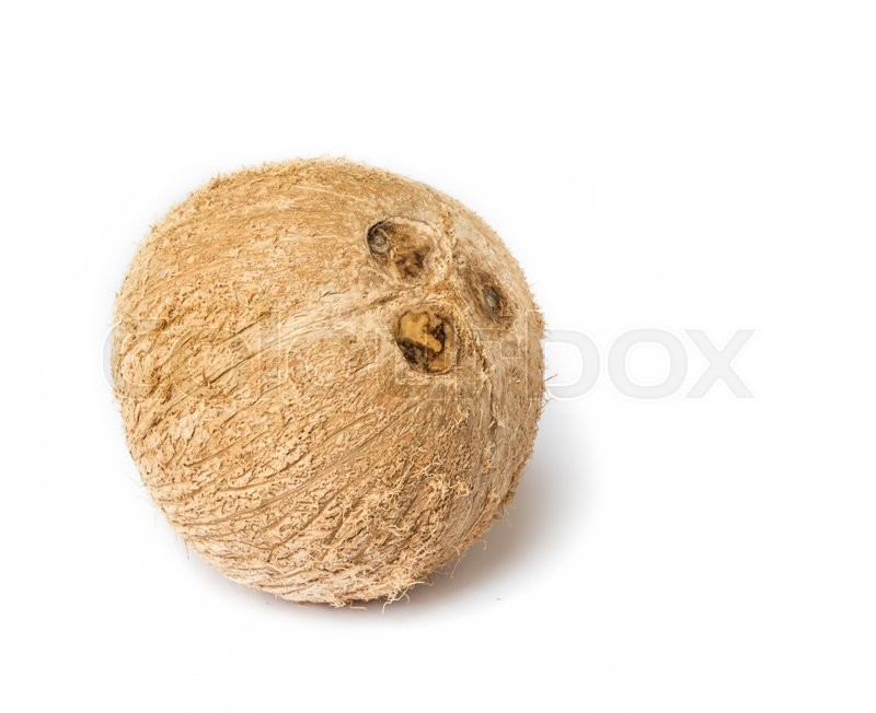 Stock image of 'close up of coconut on a white background.'