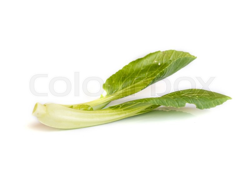 Stock image of 'Green Fresh Chinese Cabbage on White Background.'