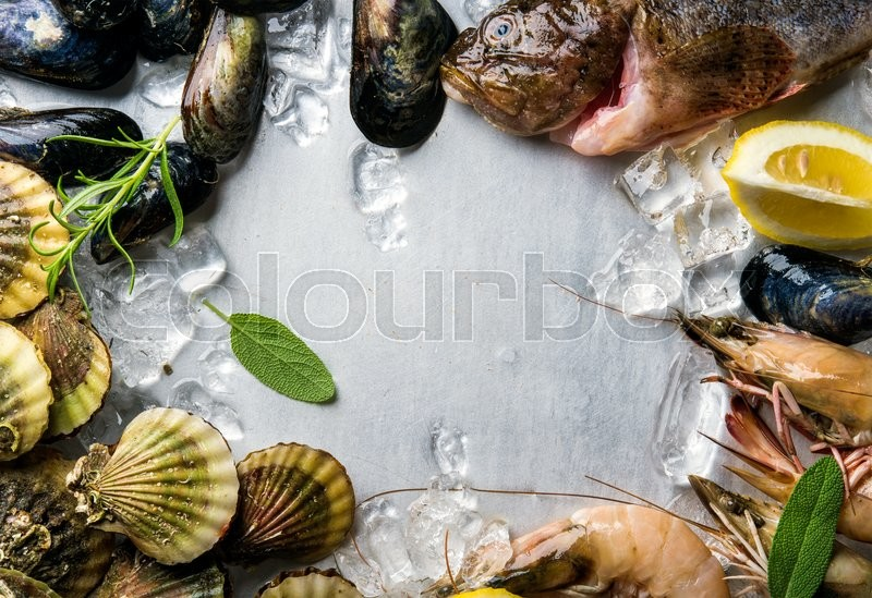 Stock image of 'Fresh seafood with herbs and lemon on ice. Prawns, fish, mussels, scallops over steel metal background. Top view, copy space'
