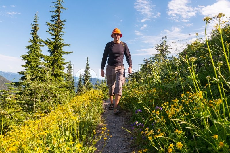 Stock image of 'Backpacker in summer mountains'