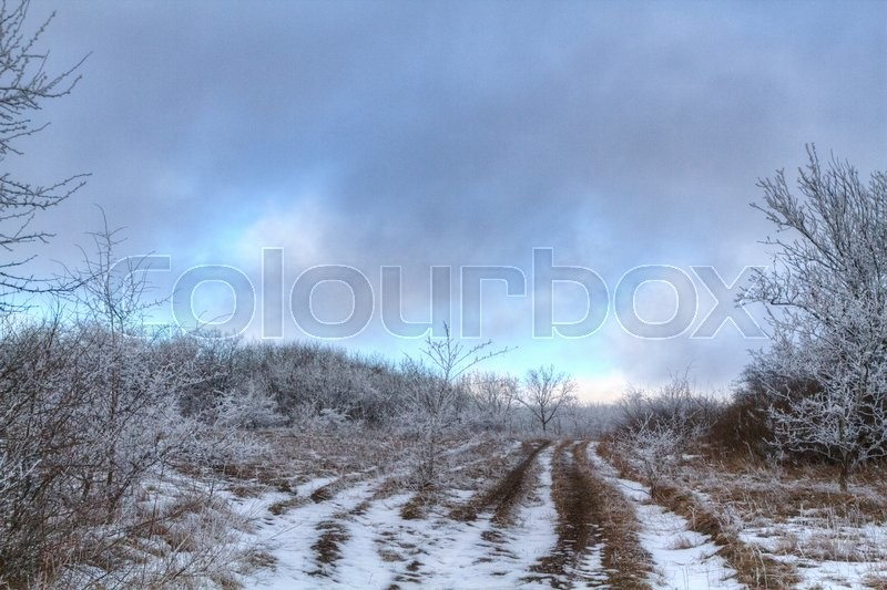 Stock image of 'road through frozen forest with snow Winter park in snow'