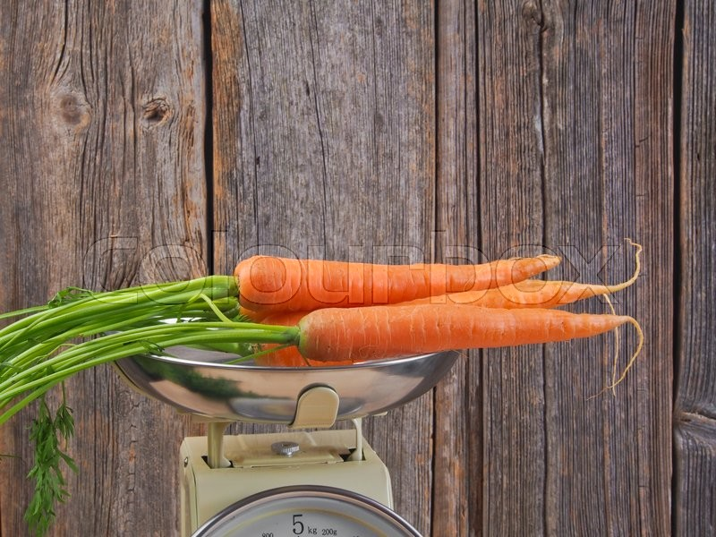 Stock image of 'Fresh carrots from the garden'