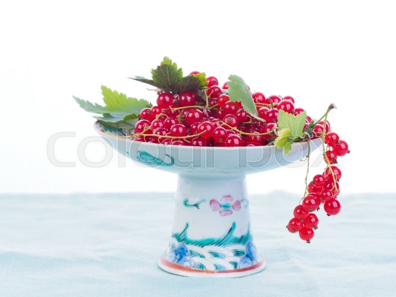 Stock image of 'Redcurrant berries fresh from garden'