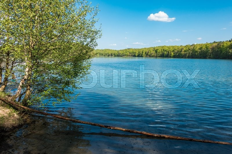 Stock image of 'Landscape on a lake with blue sky.'