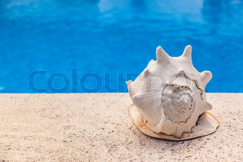 Stock image of 'Summer vacation - big sea shell by swimming pool'