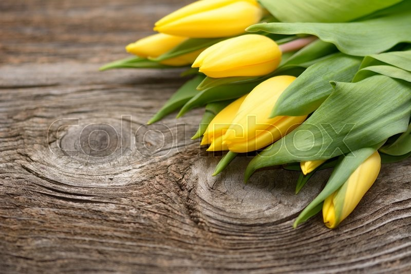 Stock image of 'Yellow tulips on wooden background'