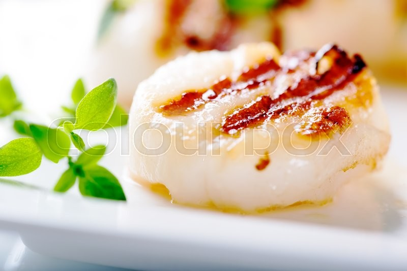 Stock image of 'Grilled scallops with thyme leafs on white plate, close up'
